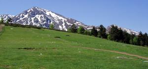prevalac-gorjne-selo-14-05-